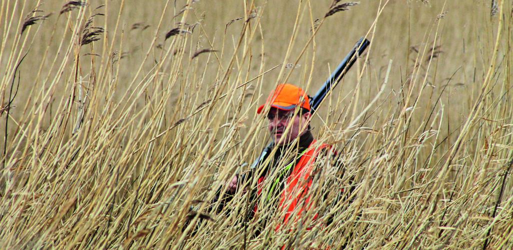 Ein Jäger steht mit Waffe in hohem Schilf